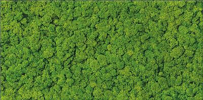 cersanit-dekor-fresh-moss-glass-inserto-29x59-1757.jpg