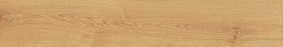 atlas-concorde-gres-exence-almond-20x120-7016.jpg