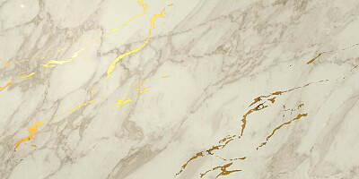 atlas-concorde-dekor-marvel-royal-calacatta-gold-vein-2-40x80-7680.jpg