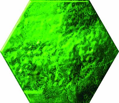 ceramica-color-dekor-green-glass-hexagon-125x145-16120.jpg