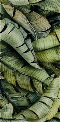 natura-dekor-scienny-leaf-b-300x600-polysk-19490.jpg