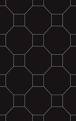 martynika-nero-dekor-scienny-250x400-polysk-18325.jpg